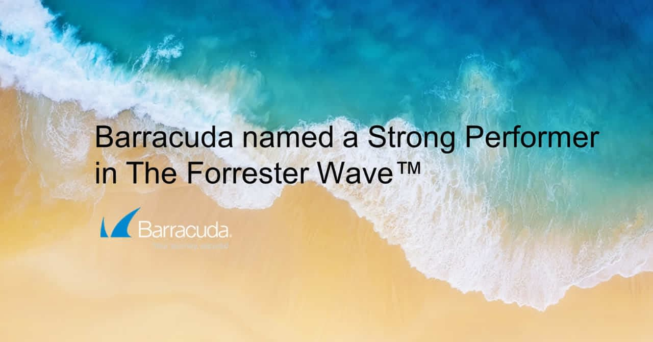 バラクーダがWAF分野でストロングパフォーマーに|Forrester Wave Q1 2020 のページ写真 1