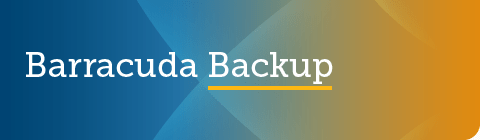 Barracuda Backup 6.5.04 GA リリース のページ写真 5