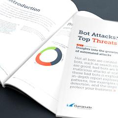 レポート: 増え続ける自動化された攻撃に関する洞察 のページ写真 12