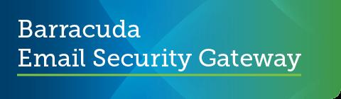 バラクーダがガートナーの2019年9月のPeer InsightsでメールセキュリティのCustomers' Choiceとして評価【メールセキュリティ】 のページ写真 1